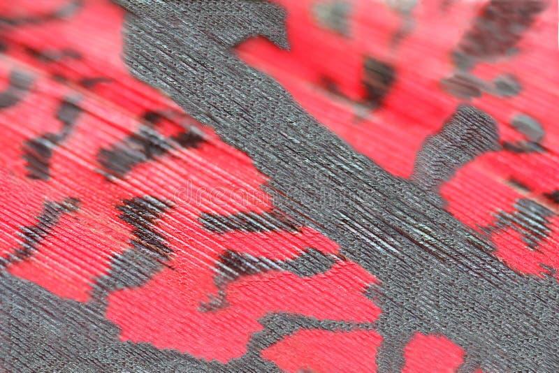 Red pheasant feather,macro royalty free stock photos