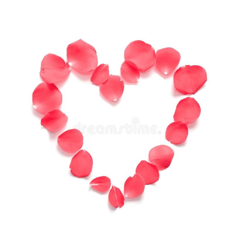 Red Pink Heart Rose Petals