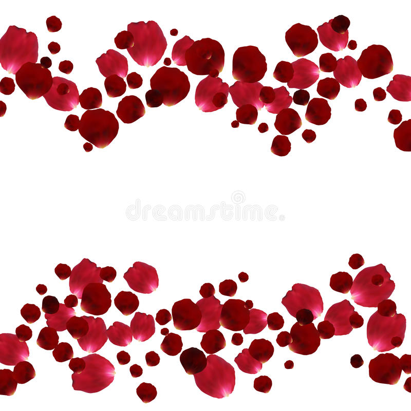 Red And Pink Rose Petals Stock Vector. Illustration Of