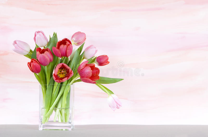 Red and pink tulips in a vase - watercolor backgr vector illustration