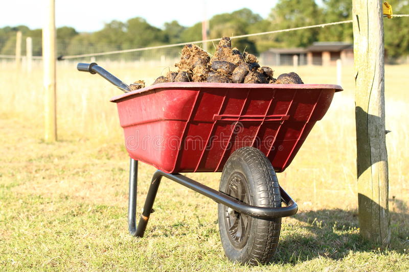 Red Plastic wheelbarrow with horse manure. In a field stock images