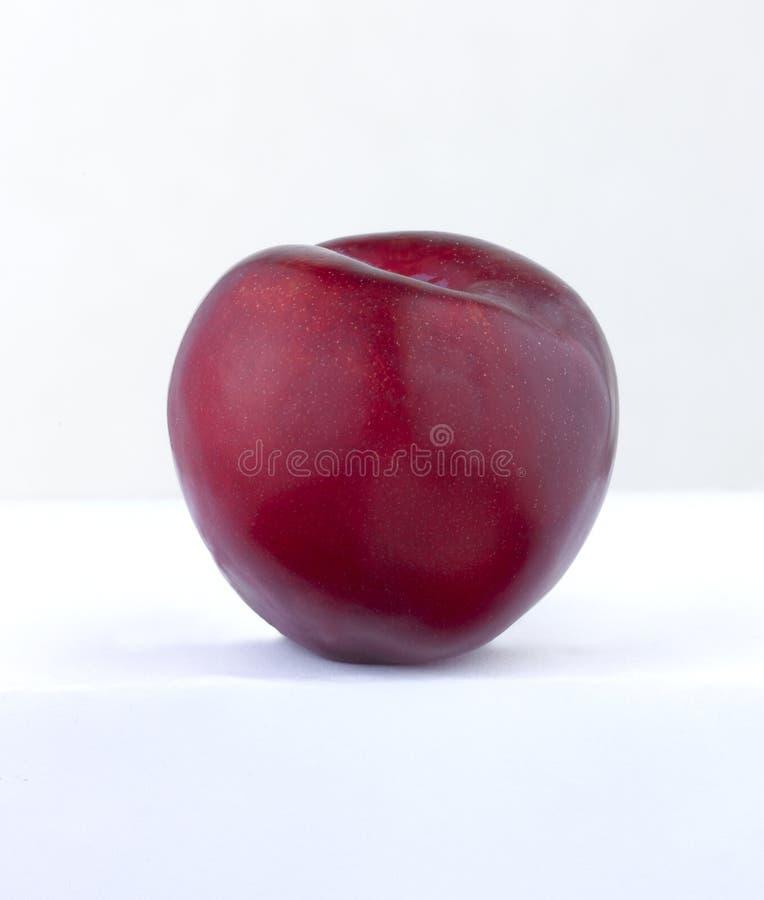 Download Red Plum stock image. Image of fruit, single, skin, plum - 25562713