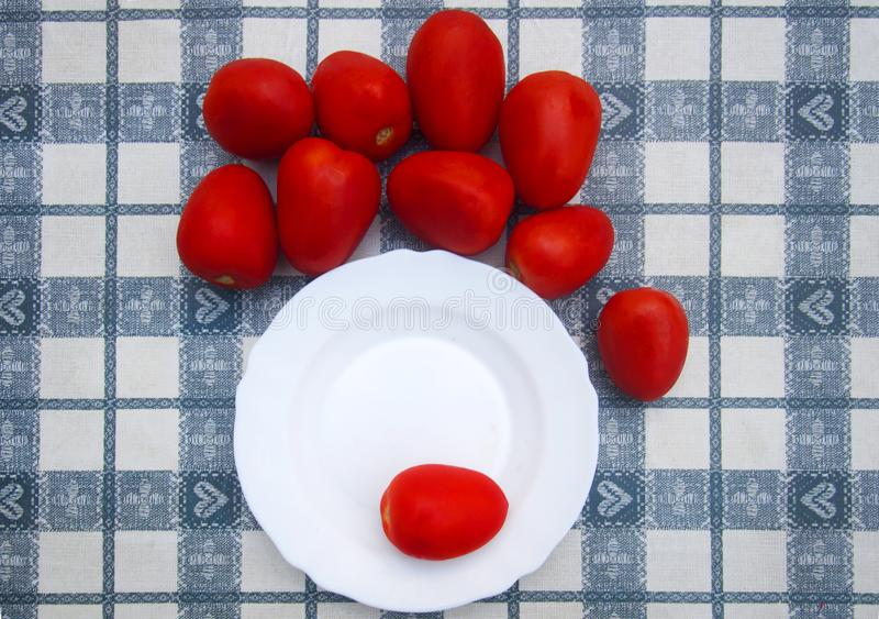 Red plum tomatoes around white plate with one tomato royalty free stock photos