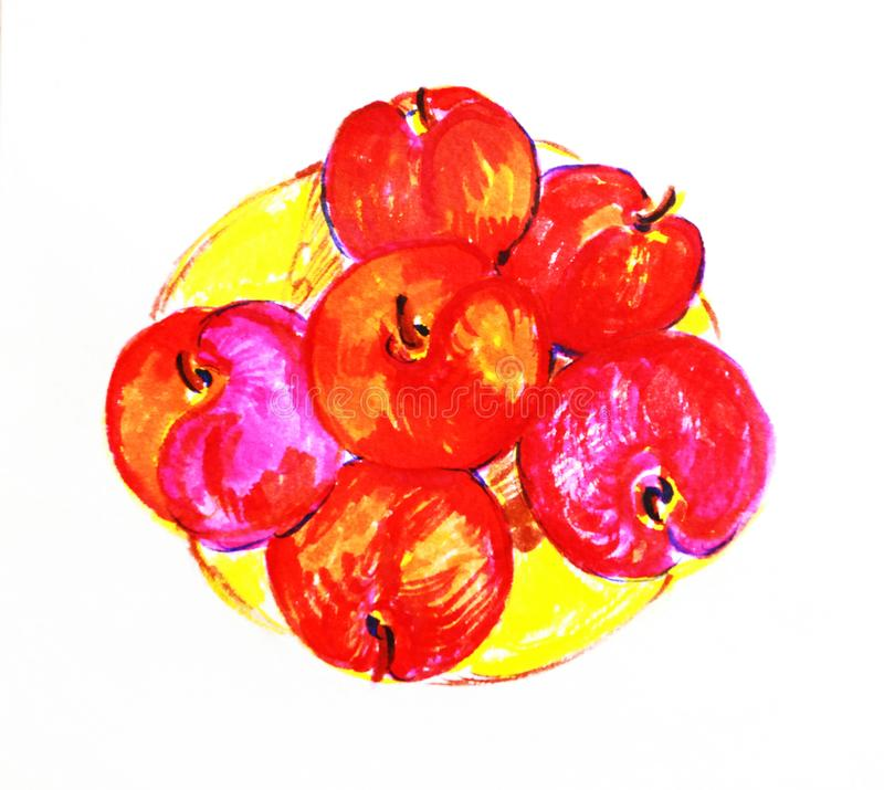 Red plums on a plate sketch in watercolor, illustration, isolate vector illustration
