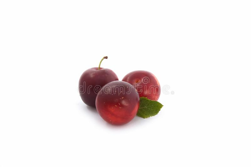 Red plums on white background. Sweet three red plums isolated on white background royalty free stock photo