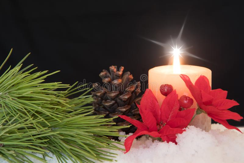 Red Poinsettia flower with lit candle, pine needles and pine cones in snow. Black Christmas Background with holiday theme royalty free stock photos