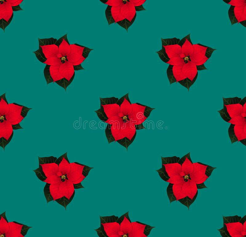 Red Poinsettia Seamless on Green Teal Background. Vector Illustration. royalty free illustration