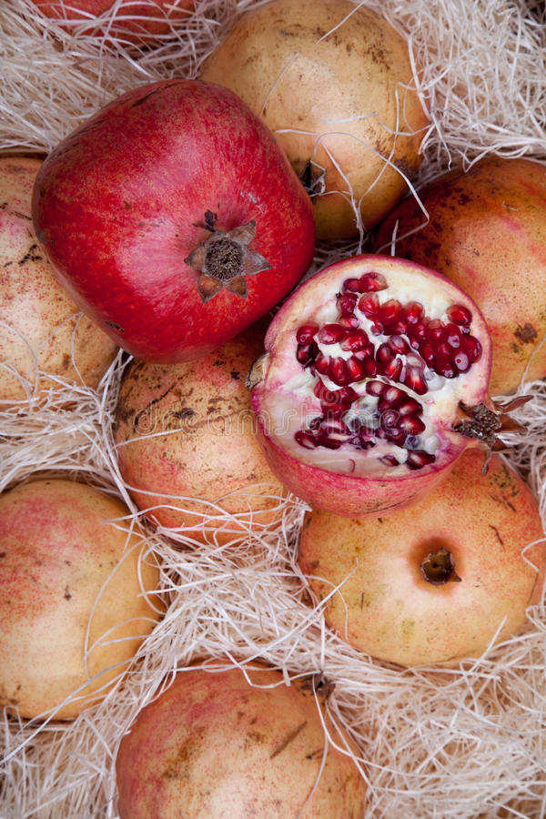 Download Red pomegranates in a box stock image. Image of ripe - 17181997
