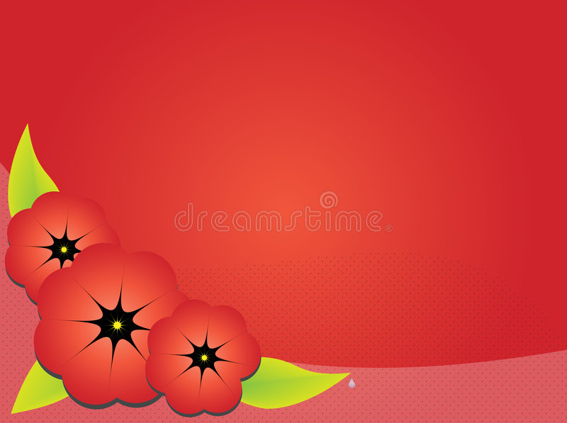 Download Red poppies stock vector. Illustration of flower, illustration - 5903229