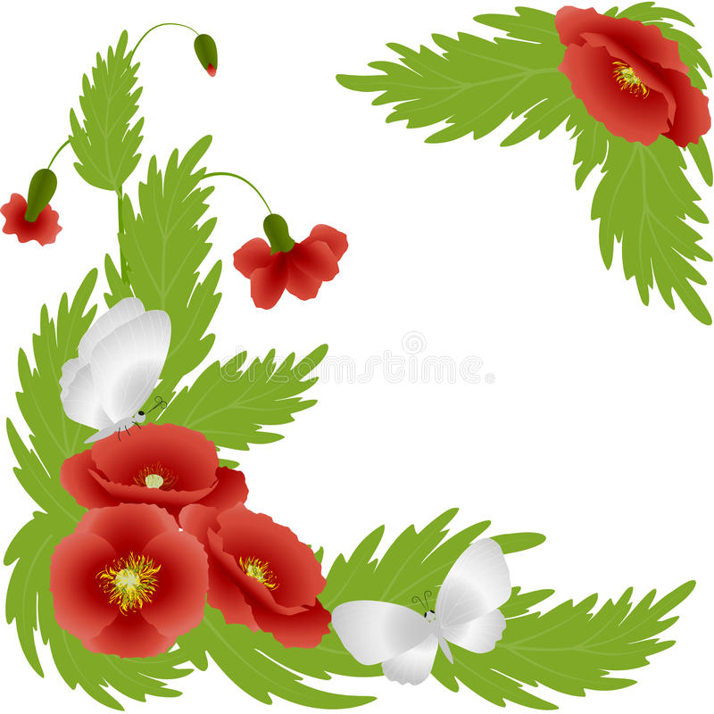 Free Red Poppies And White Butterflies Stock Photography - 67430212