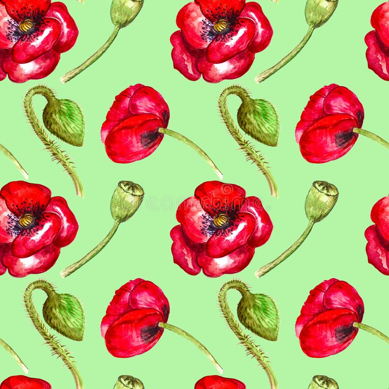 Red poppies watercolor seamless pattern on green background hand drawing stock illustration