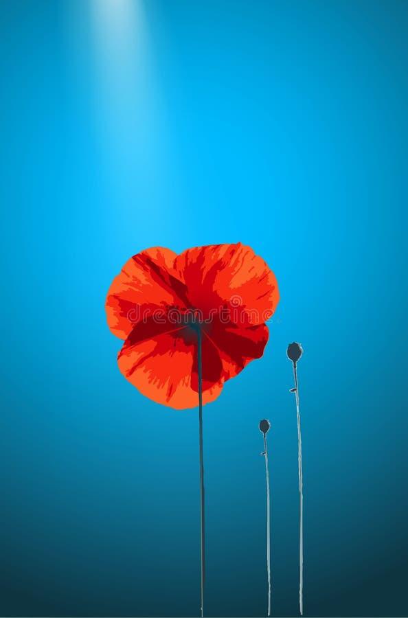 Red Poppy. On blue background with light. Vector illustration vector illustration