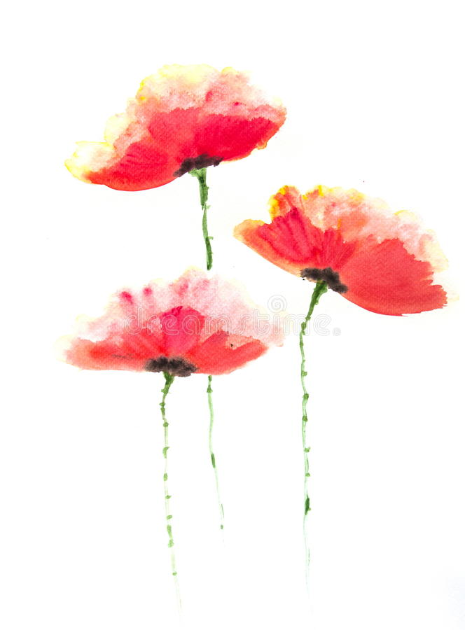 Red poppy flower acrylic color painting stock illustration download red poppy flower acrylic color painting stock illustration illustration of original colorful mightylinksfo Gallery