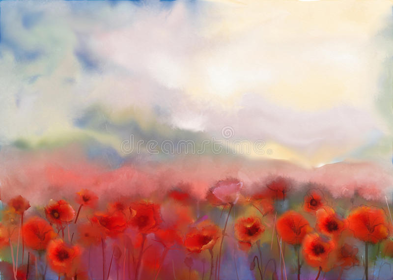 Red poppy flowers .Watercolor painting. Red poppy flowers filed watercolor painting. Hand painting summer-spring flowers nature background. Red poppy in fields vector illustration