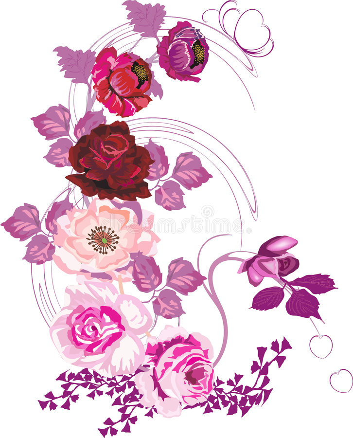 Red poppy and pink rose vector illustration