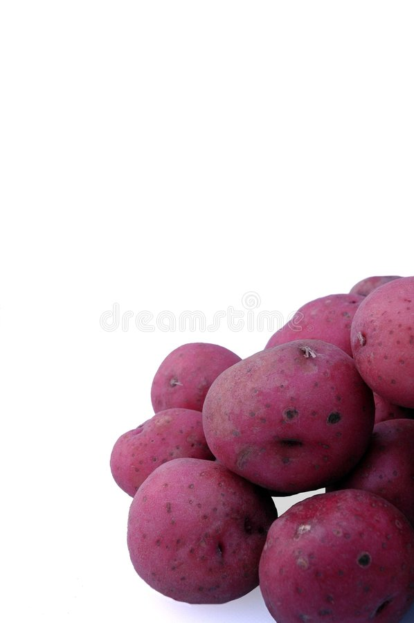 Free Red Potatoes Stock Photography - 1401912