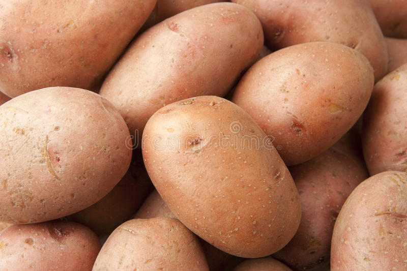 Download Red Potatoes Close Up stock image. Image of agriculture - 10709797
