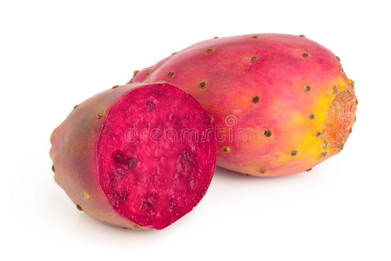Red prickly pear or opuntia isolated on a white background.  royalty free stock photo