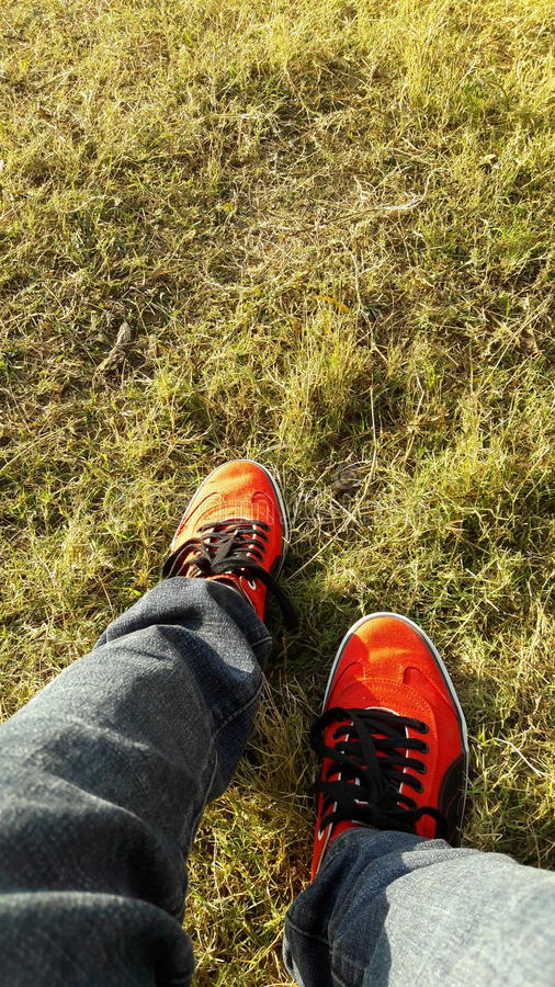 Red Puma shoes with grass HD wallpaper stock photo