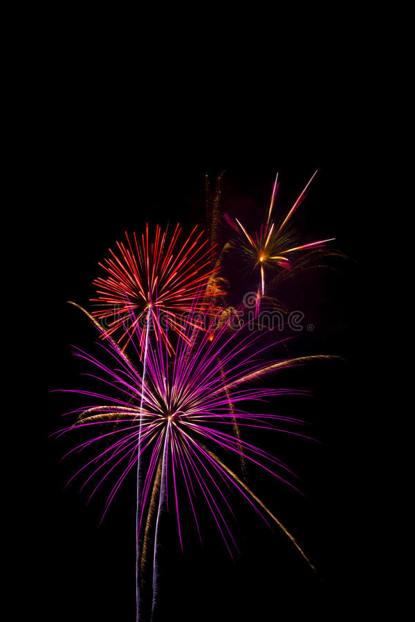 Red and pupper firework isolated on black background, sumida river firework fes stock photos