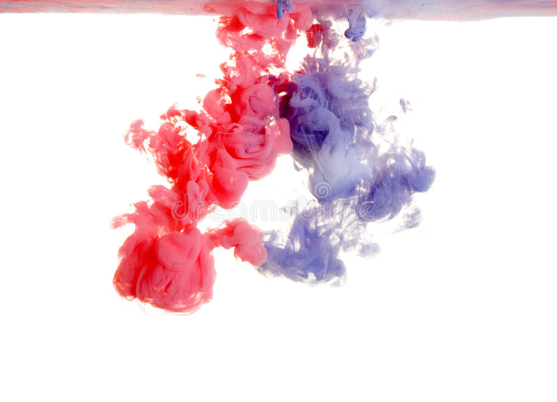 Red and purple paint in water. An abstract on a white background royalty free stock image