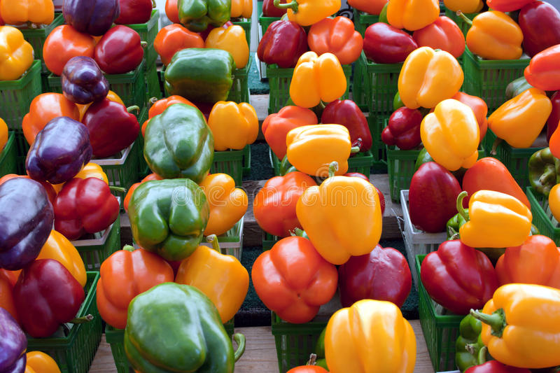 Download Red, Purple, Yellow, Green And Orange Bell Peppers Stock Image - Image: 13353117