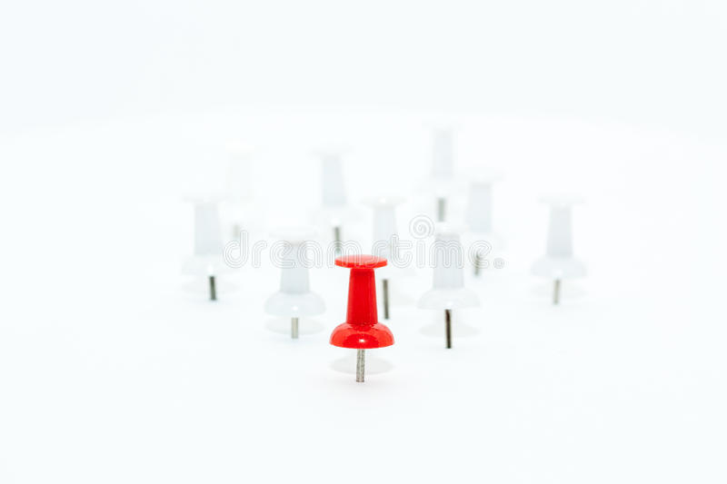Red Push pin in front and white push pins at back. Leadership concept stock photography