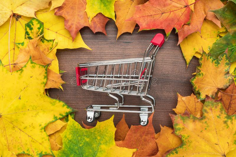 Red pushcart in the centre of autumn leaves frame. fall sale season concept royalty free stock images