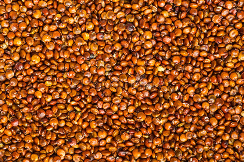 Red quinoa seeds. Background.Top view stock images