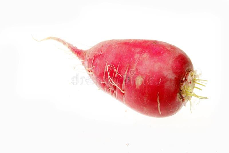 Download Red radish stock image. Image of vegan, freshness, ripe - 14157167