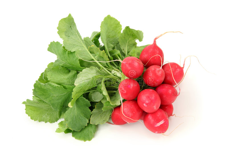 Download Red radish stock image. Image of eating, close, green - 8802571