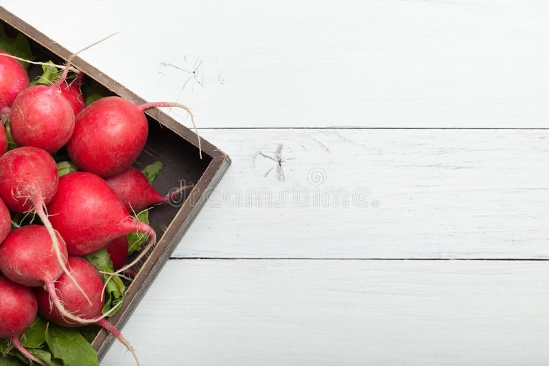 Red radish root plant. Wooden board, agriculture background. Copy space for text.  royalty free stock image
