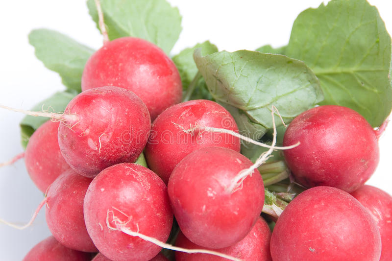 Download Red radishes stock image. Image of radishes, natural - 23761707