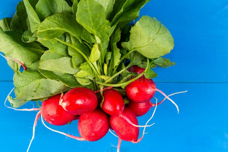 Red Radishes on the blue wooden board & x28;Flip 2019 royalty free stock image