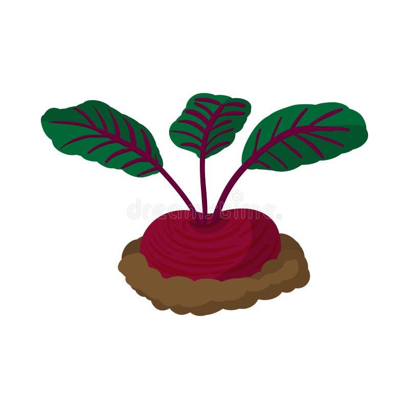 Red radishes cartoon icon. On a white background stock illustration