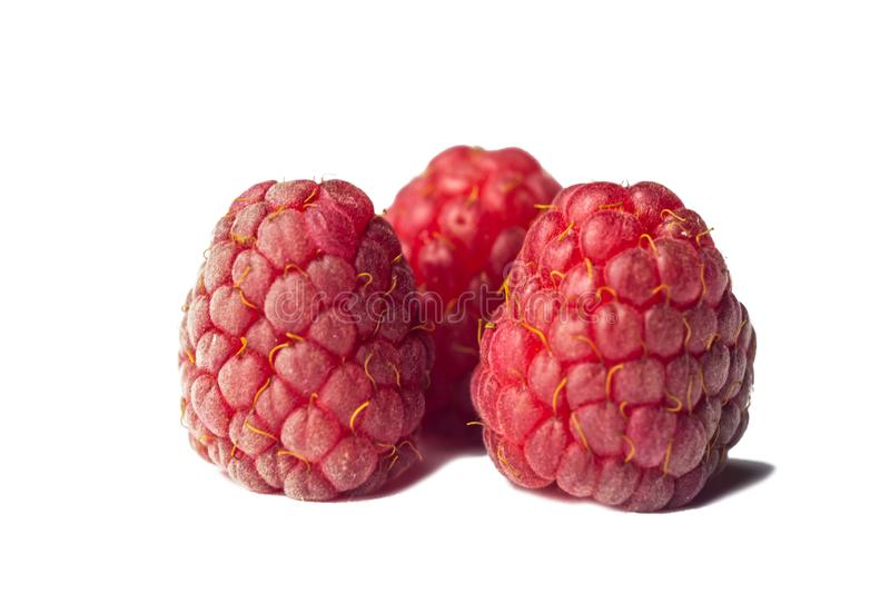 Red raspberry berries close-up isolated on a white background. sweet summer medicinal berries macro details.  stock photography