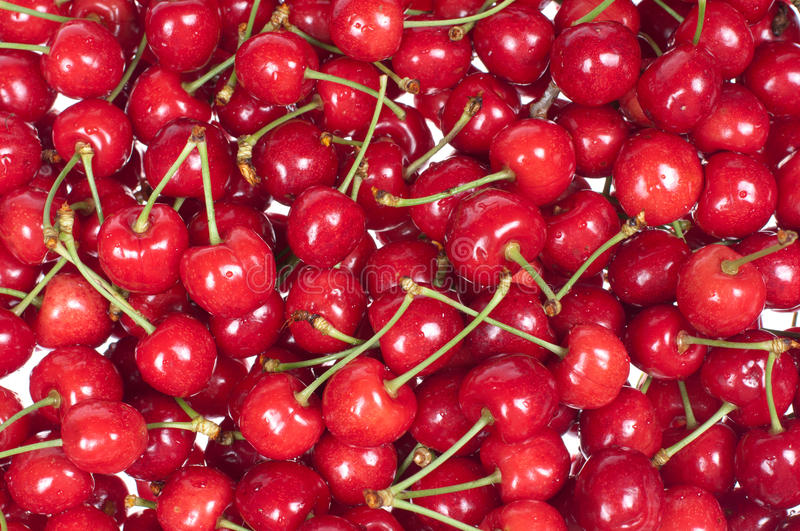 Download Red raw Chery stock photo. Image of green, image, food - 25303848