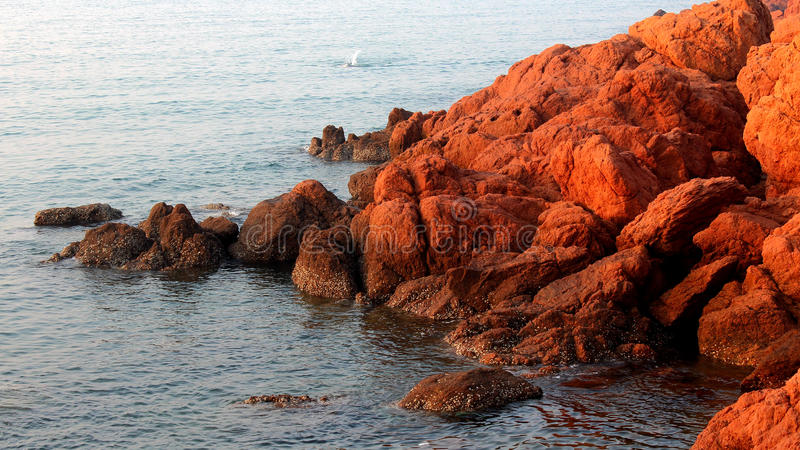 Red reef. Qingdao coast, China, the early rising sun shining on the red reef royalty free stock photos