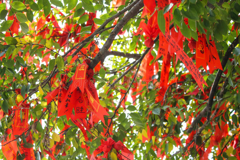 Red Ribbon on a Wishing Tree in Lianhuashan Lotus Hill, Guangzhou, China. Red Ribbon that are thrown onto a Wishing Tree in Lianhuashan Lotus Hill, Guangzhou stock photos