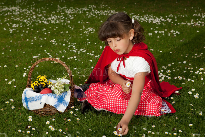 Red riding hood picking daisies stock photo