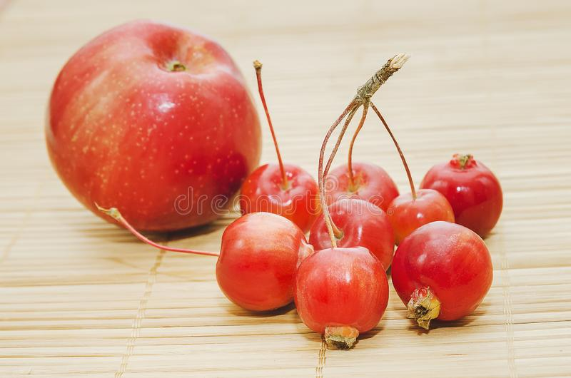 Red ripe apples Malus 'Ranetka` on wooden background. Big and small apples are near, a comparison royalty free stock images