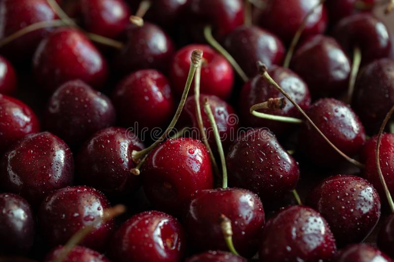 Red ripe fresh cherries in drops of water close-up. Cherry background. Berry pattern and texture. Food background stock photography