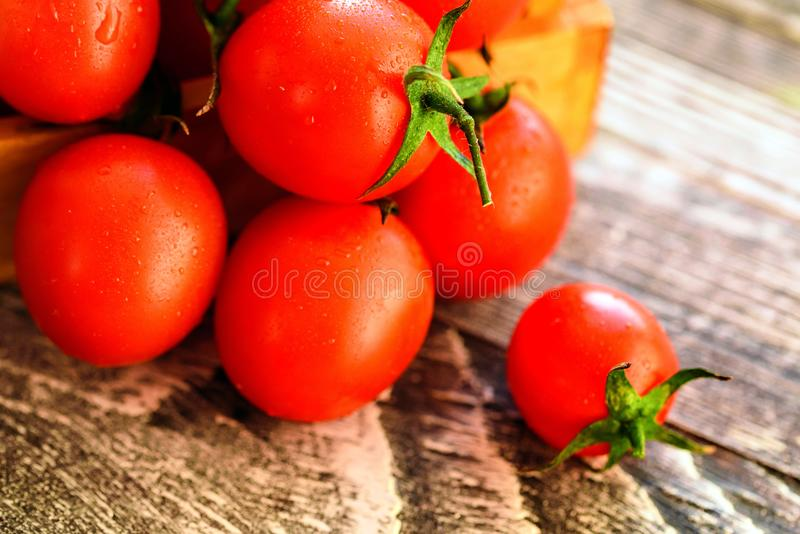 Red ripe tomatoes spill out of box. Rustic view royalty free stock photo