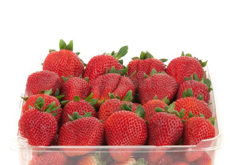 Red ripe strawberries all lined up in a container stock photos