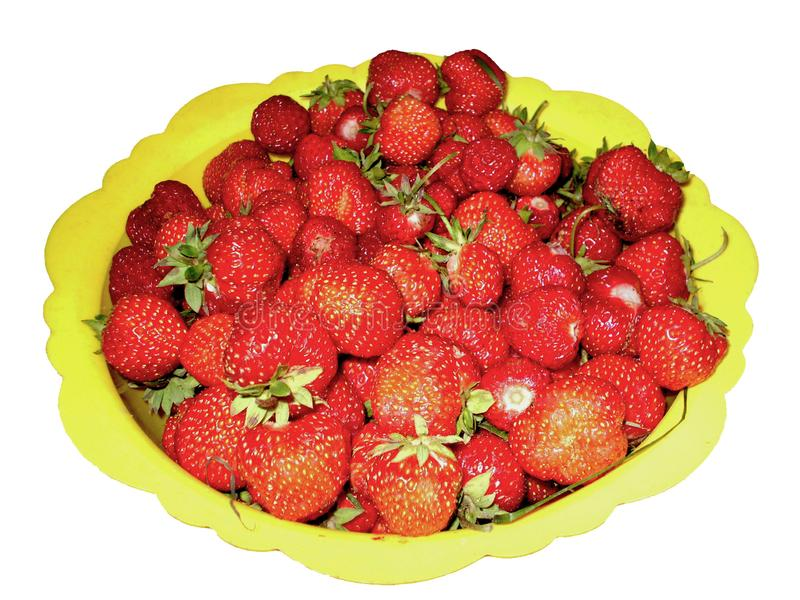 Red ripe strawberries in a yellow bowl. Isolated royalty free stock images