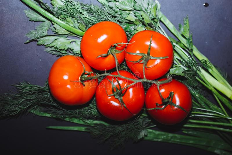 Red ripe tomatoes on a branch, green dill and onions on a black background, top view, close-up royalty free stock photos