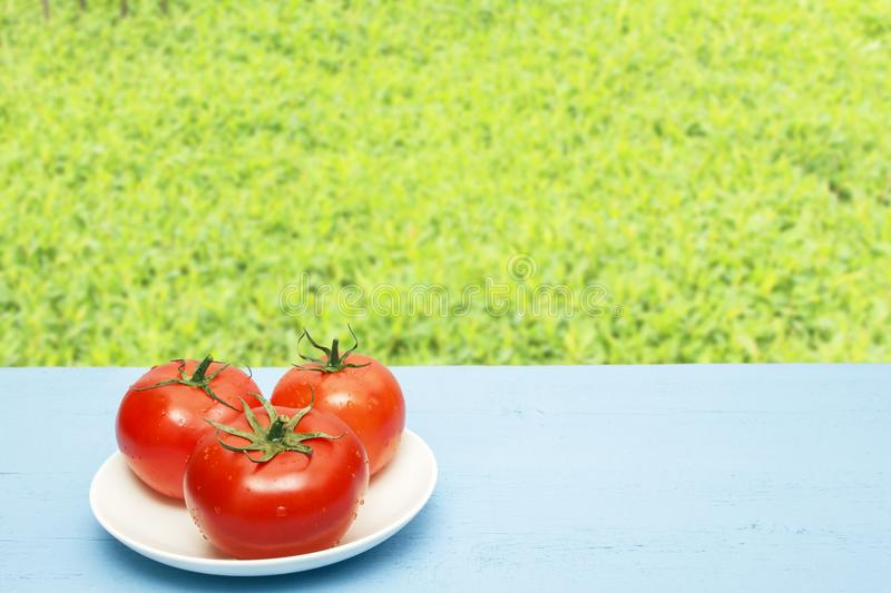 Red ripe tomatoes on wooden table and on background of green grasses. Copy space. Natural food concept. Rustic lifestyle.  stock photography