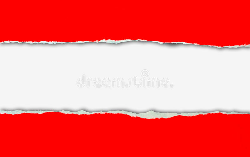 red ripped paper on white background stock photo image