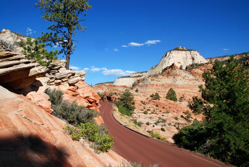 Red Road in Zion National Park. Winding road through checkerboard mesa in zion national park, utah stock photography