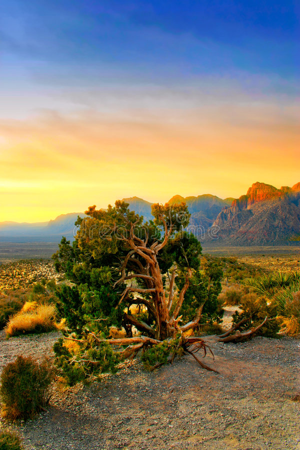 Download Red Rock Canyon, Nevada Stock Photo - Image: 1234150